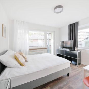 Junior Apartment A1